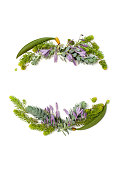 Flat lay frame wreath with evergreen succulent blue and green leaves and hosta purple flowers. Top view holiday concept.