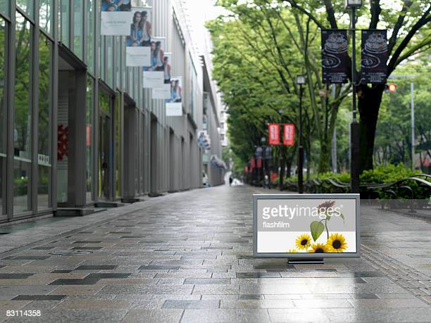 Flat TV placed on Omotesando street