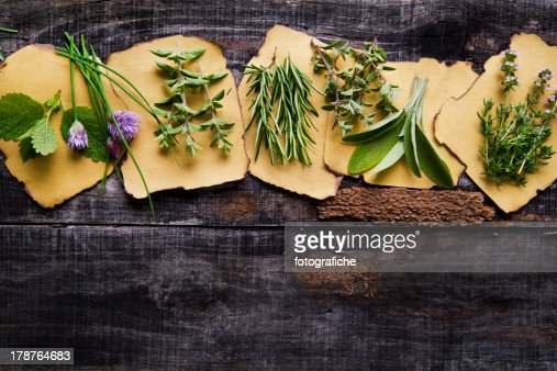 Flavors Of Herbs : Stock Photo