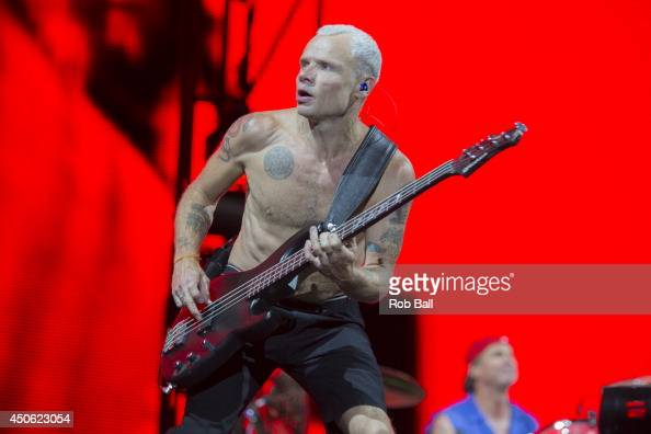 Flea from Red Hot Chili Peppers performs at The Isle of Wight Festival as Seaclose Park on June 14 2014 in Newport Isle of Wight