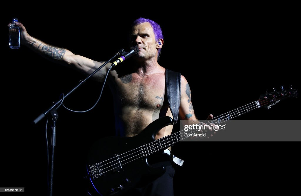 Flea of The Red Hot Chilli Peppers performs live on stage at Big Day Out 2013 at Sydney Showground on January 18, 2013 in Sydney, Australia.