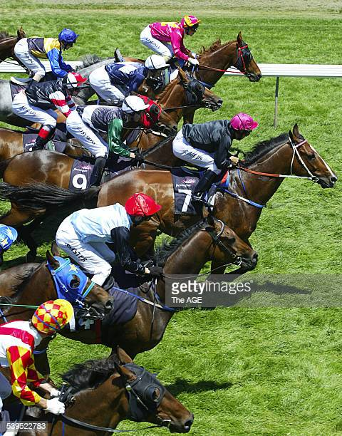 Flemington Races December 18th 2004 Race 4 All eyes are on favourite Steven Arnold and Demerger as the field bursts out of the barrier Demerger went...