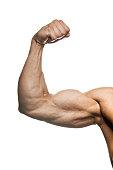 Flexed man's biceps