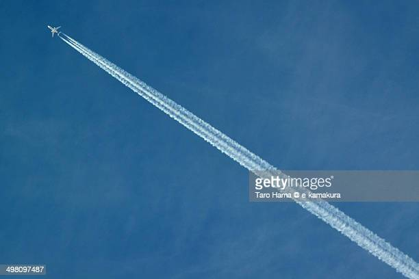 Flight in blue sky