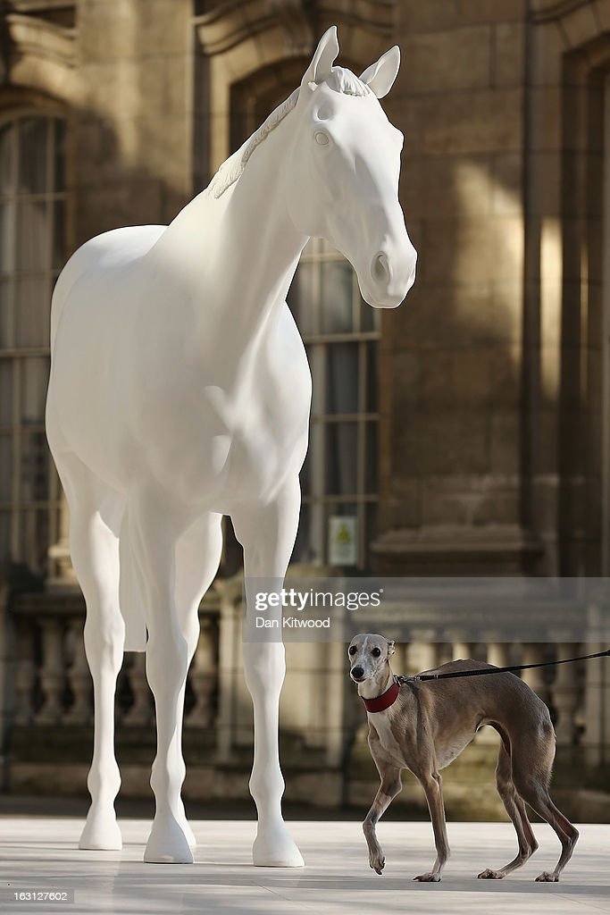 Flint the Whippet stands beside the new sculpture 'The White Horse' by Artist Mark Wallinger after it was unveiled outside the headquarters of The British Council on the Mall on March 5, 2013 in London, England. The British Council unveiled the marble and resin, life-size sculpture representing a thoroughbred racehorse, as it announced a GBP 7 million investment in work connecting UK-based creative talent overseas.
