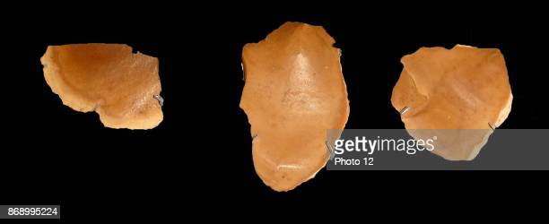 Flints Stone tools such as these were used for everything from household tasks to butchery From elAmarna in ancient Egypt Circa 1350 BC
