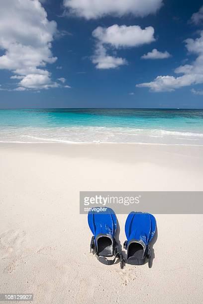 Flippers on Caribbean Beach