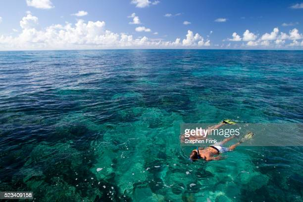 Floating above a coral reef