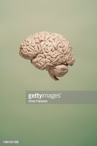 Floating brain on green background