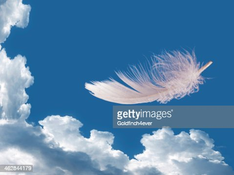 Floating feather over sky - lightness, freedom concept : Stock Photo