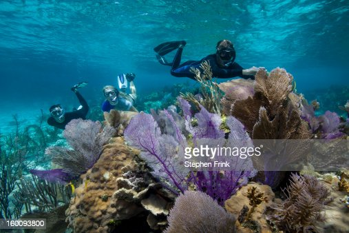 Floating in Crystalline Waters