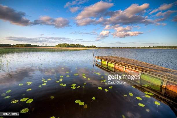Floating pier and water lilies