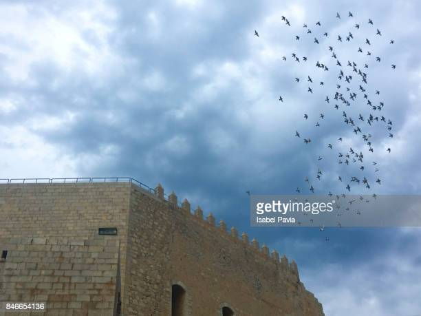 Flock Of Birds Flying Against Cloudy Blue Sky, Peniscola, Spain