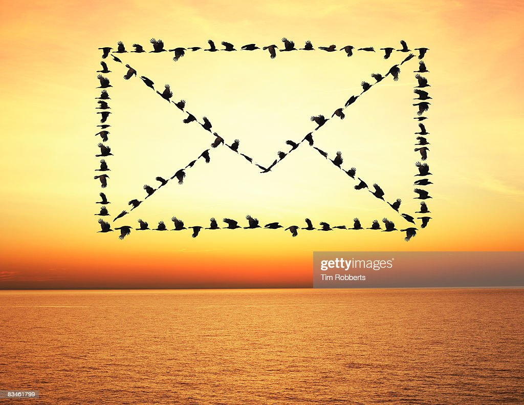 Flock of birds flying in email envelope formation : ストックフォト