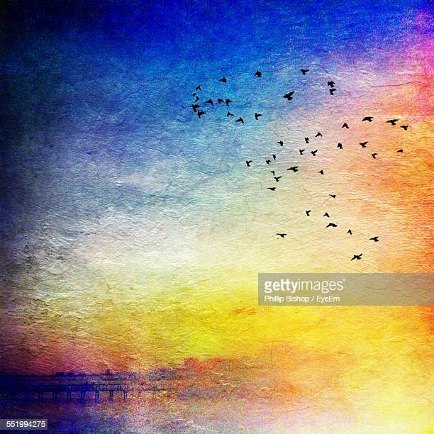 Flock Of Birds Flying In Sky