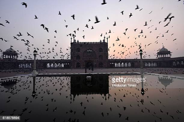Flock of birds seen flying over the Jama Masjid on October 27 2016 in New Delhi India The New Zealand Prime Minister had been on a fourday visit to...