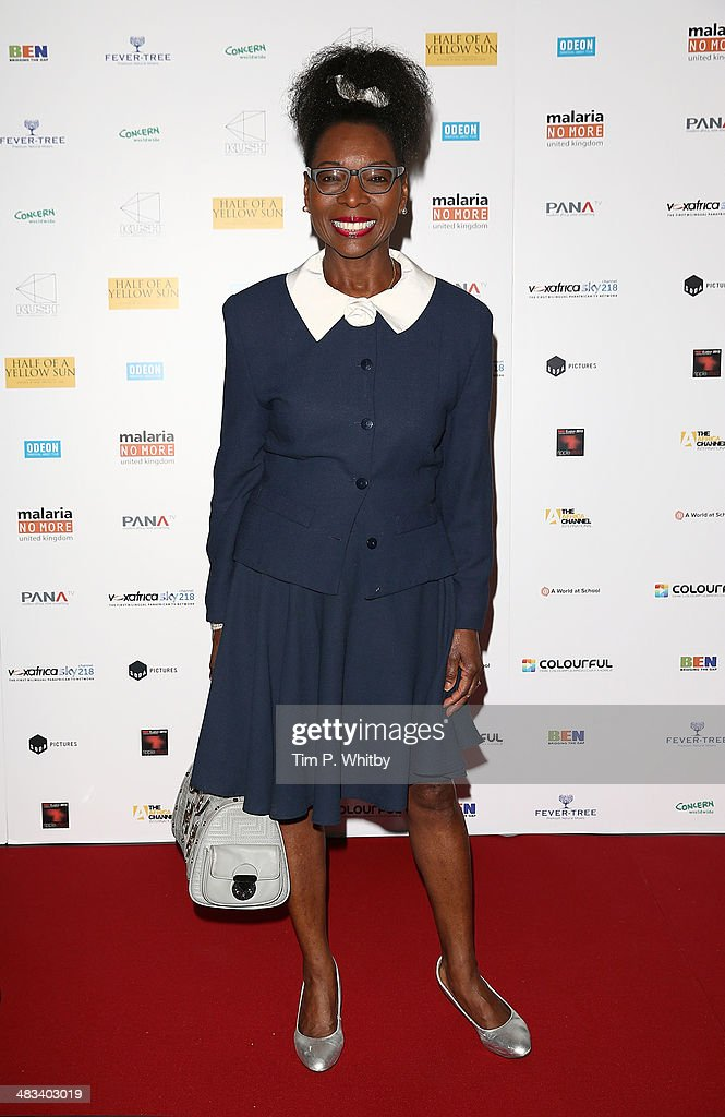 <a gi-track='captionPersonalityLinkClicked' href=/galleries/search?phrase=Floella+Benjamin&family=editorial&specificpeople=158839 ng-click='$event.stopPropagation()'>Floella Benjamin</a> attends the UK Premiere of 'Half Of A Yellow Sun' at Odeon Streatham on April 8, 2014 in London, England.