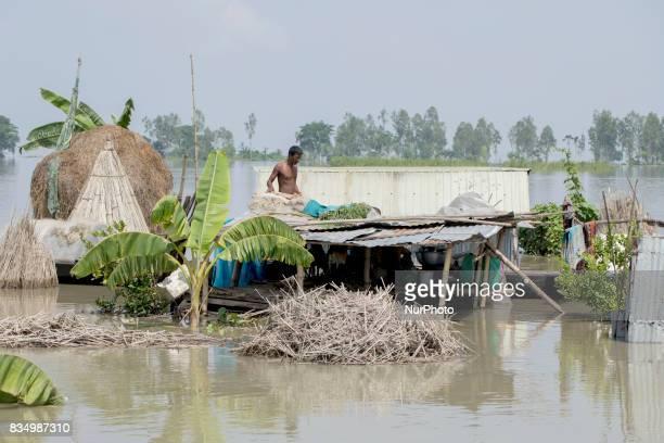 Flood affected area at Shariakandi Bogra Bangladesh 17 August 2017 According to authorities floods caused by heavy rainfall lashing Bangladesh during...