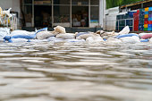Flood water - Sandbags for flood defense