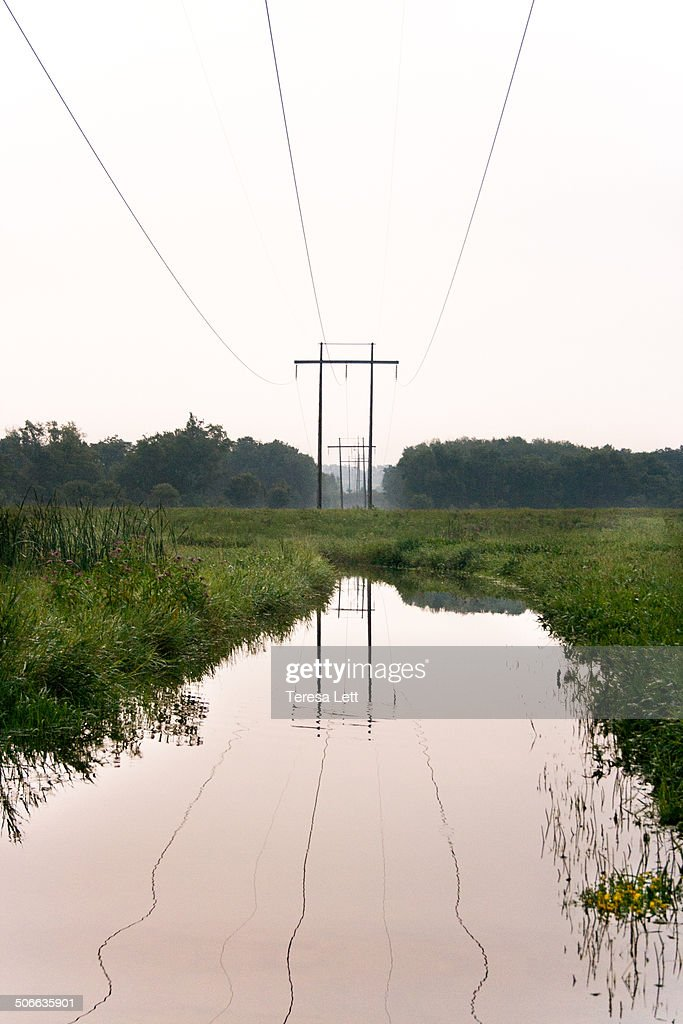 Flooded meadow with power lines