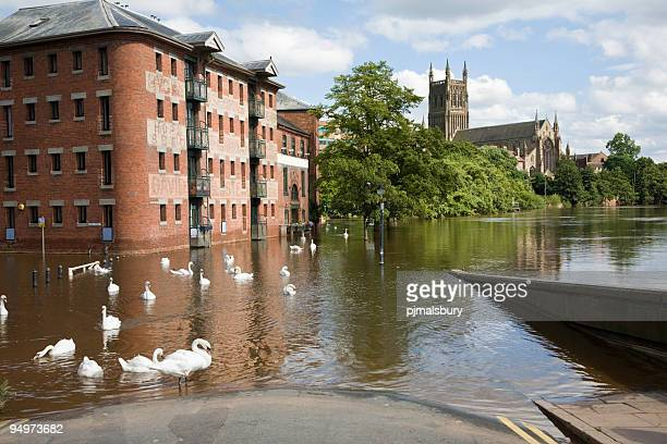 Flooded River Severn at Worcester