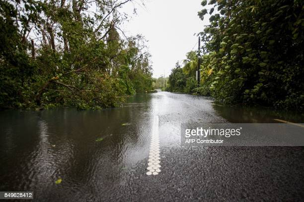 A flooded road is pictured near the village of Viard Petit Bourg on September 19 2017 in the French territory of Guadeloupe after the passage of...
