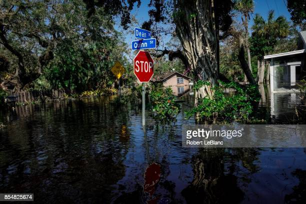 Flooded Stop Sign