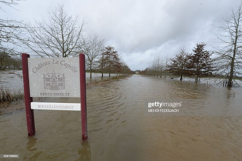 Flooded vineyards are pictured at a winemaker's in Arveyres, southwestern France, on February 12, 2016 after the river Garonne reached a flood peak over 6,8 meters. / AFP / MEHDI FEDOUACH