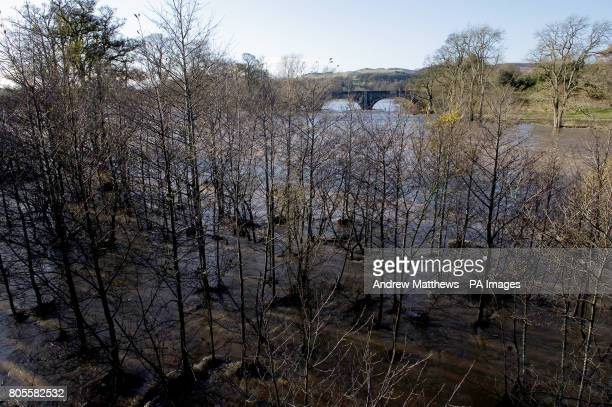 Flooding at the point where the river Yarrow meets the river Tweed at Boleside near Selkirk in the Scottish borders