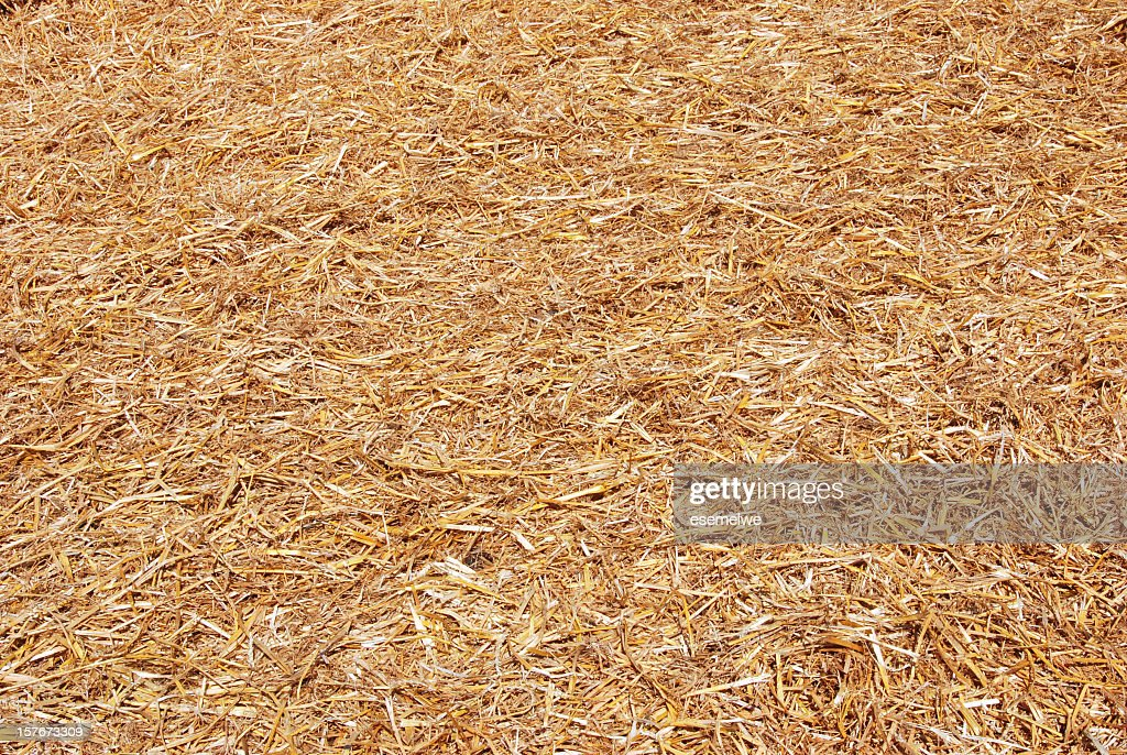 Floor covered in light brown straw