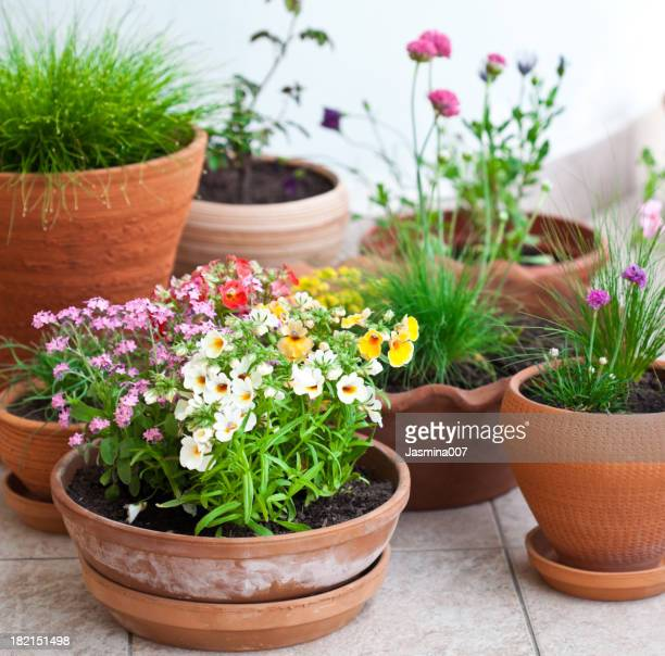 Décoration florale balcon