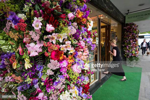 A floral display adorns a shop front in Chelsea on May 23 2016 in London England Shops and areas of Chelsea in London have been decorated with floral...