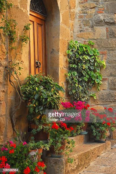 Eingang mit Blumenmuster