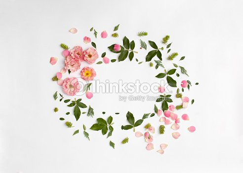 Floral Frame With Rose Flowers Petals Succulent Plants Stock Photo ...