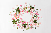 Floral round frame with rose petals, red berries and green leaves on white background. Flat lay, top view
