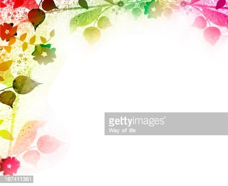 Floral vintage leaves and flowers backgrounds : Stockfoto