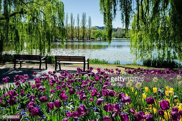 Floriade Spring Festival