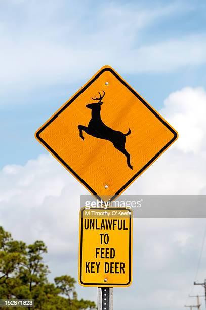 Florida Keys deer sign