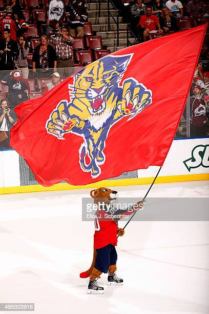 Florida Panthers Mascot Stanley C Panther celebrates their 41 win against the Colorado Avalanche at the BBT Center on October 27 2015 in Sunrise...