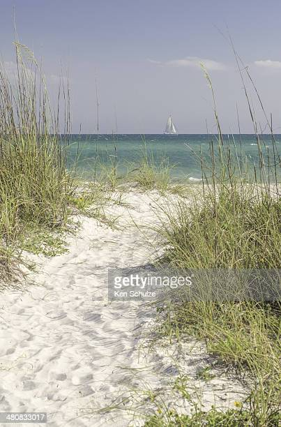 USA, Florida, Sarasota County, Path of white sand to sea