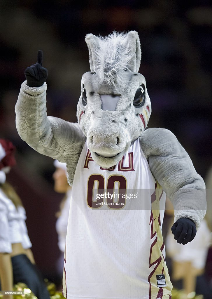 Florida State mascot Cimarron #00 displays his school pride during the game at the Donald L. Tucker Center on December 17, 2012 in Tallahassee, Florida. Florida State won 63-48.