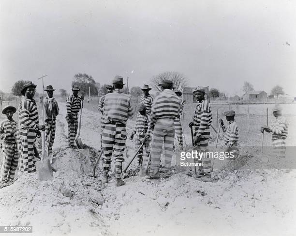 FloridaPrisoners in a chain gang building a road Undated photograph