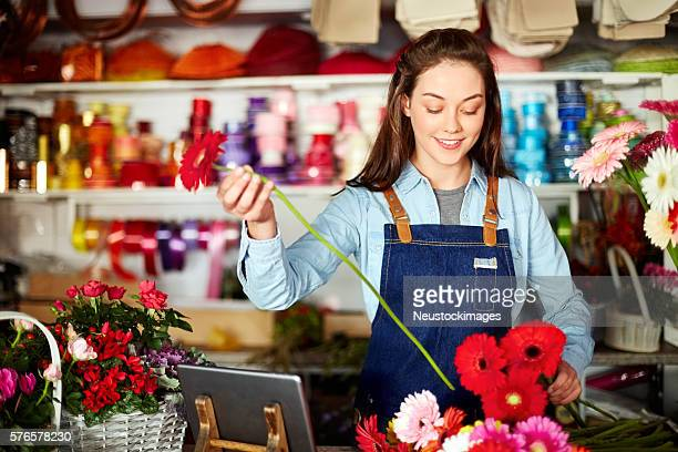 Florist arranging fresh Gerbera daisies at checkout counter