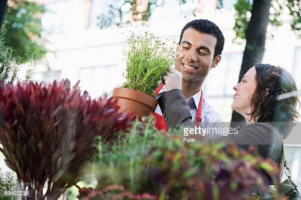 Florist Helping Customer Choose a Plant