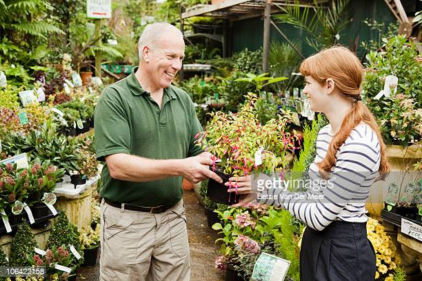 Florist passes fuchsia plant to client.