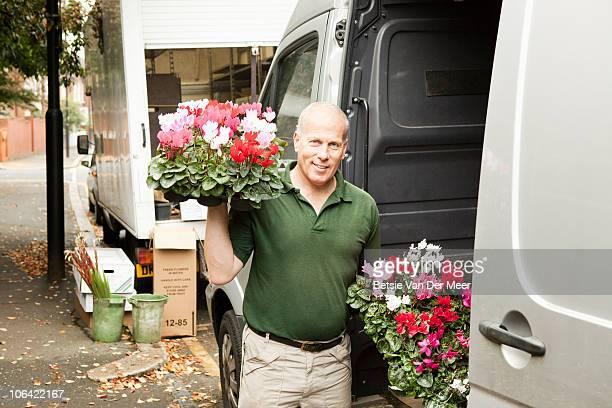 Florist unloading van holding trays of cyclamen.