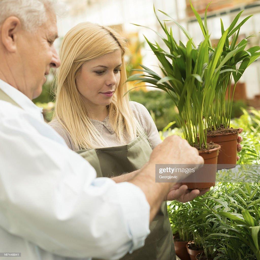 Florists holding flowers : Stock Photo