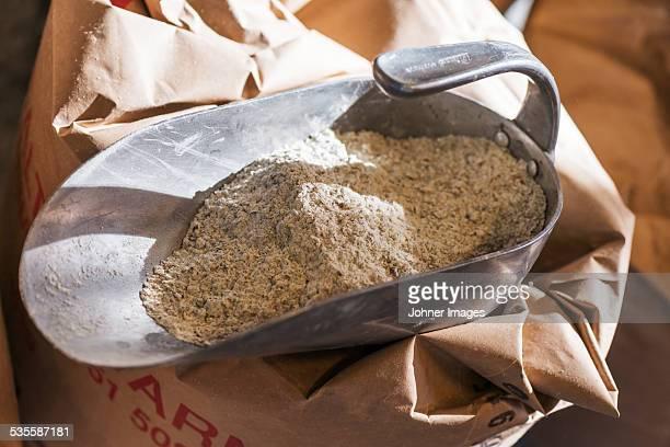 Flour on metal scoop