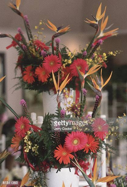 Flower 1984 Summer Olympics Closeup portrait of bouquet for medal winning athletes Los Angeles CA 7/28/19848/12/1984