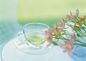 Flower and cup of herb tea on table